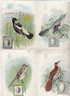 Image for (Advertising) 4 Bird cards painted by J. L. Ridgway